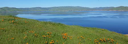 Photo courtesy of www.parks.ca.gov